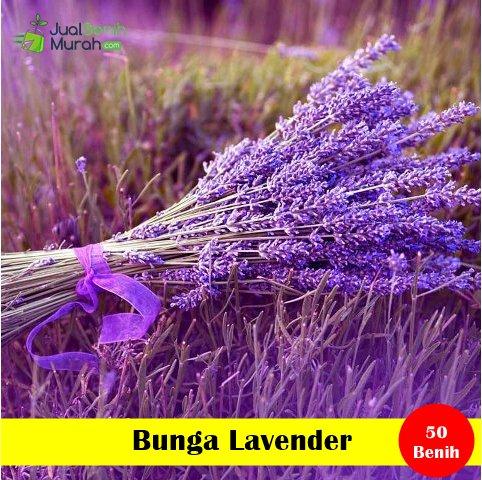 Lavender wedding rings dual dreamcatchers totem spirit